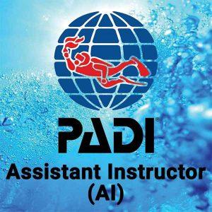 Buceo CID Lanzarote - Curso PADI Assistant Instructor