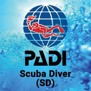 Buceo CID Lanzarote - Curso Scuba Diver