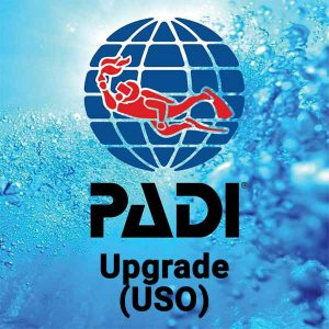 Buceo CID Lanzarote - Curso PADI Upgrade