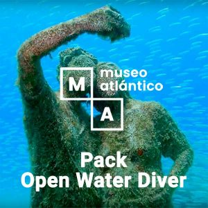 Ofertas Museo Atlántico