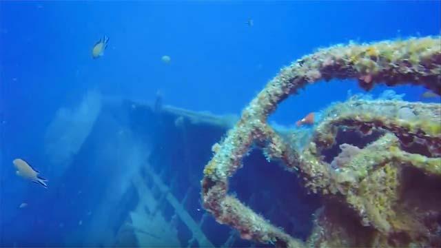 Las mejores inmersiones de Lanzarote - Pecios del Carmen